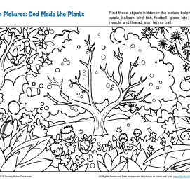 god_made_the_plants_hidden_pictures_Page_1